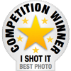 I Shot It Competition Winner
