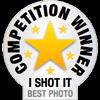 I Shot It Competition Winner